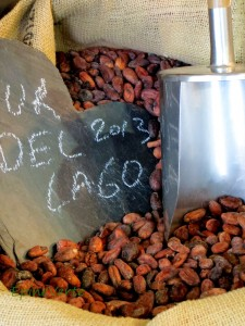Sac de fêves de cacao chez Blondeel