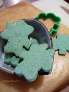Sablé Saint Patrick
